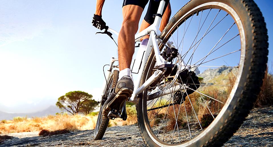 gallery-bike-rider-full